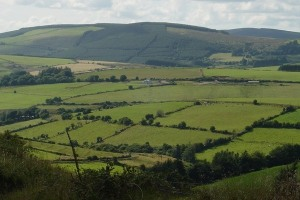 Gorgeous Tipperary -- from TheGatheringIreland.com