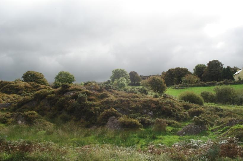 View from Kilmichael Ambush memorial